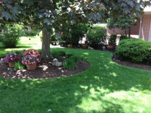 Ornamental shrub care in Wilmington Delaware | Layton's Lawn & Landscaping