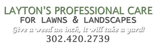Layton's Profession Services for Lawns & Landscapes